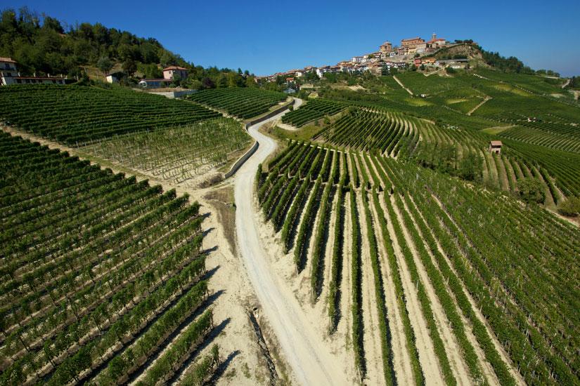 La Morra Vineyards Voerzio Barolo