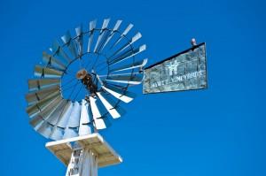 hyatt-vineyards-windmill-cu-300x199